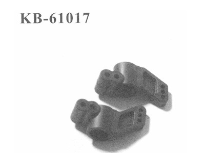 KB-61017 Radtraeger hinten